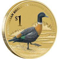 Австралийская пеганка (утка)- Тувалу, 1 доллар, 2013 год