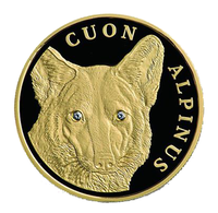 """Золотая монета """"Красный Волк"""""""