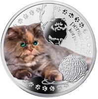 Persian cat - Персидский кот